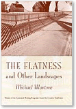Michael Martone, The Flatness and Other Landscapes